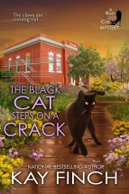 """""""The Black Cat Steps on a Crack"""" Kay Finch"""
